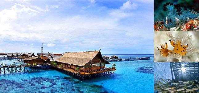 KAPALAI ISLAND